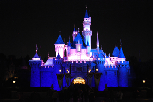 Sleeping Beauty Castle - Night V