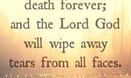 Isaiah 25-8
